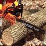 Chainsaws from Grasslands Kumeu & Grasslands Ranui